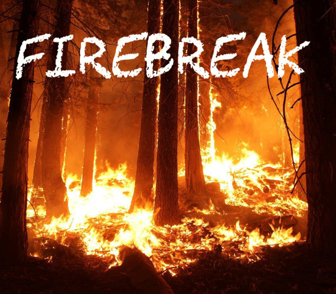 Firebreak: A Fifty Word Story