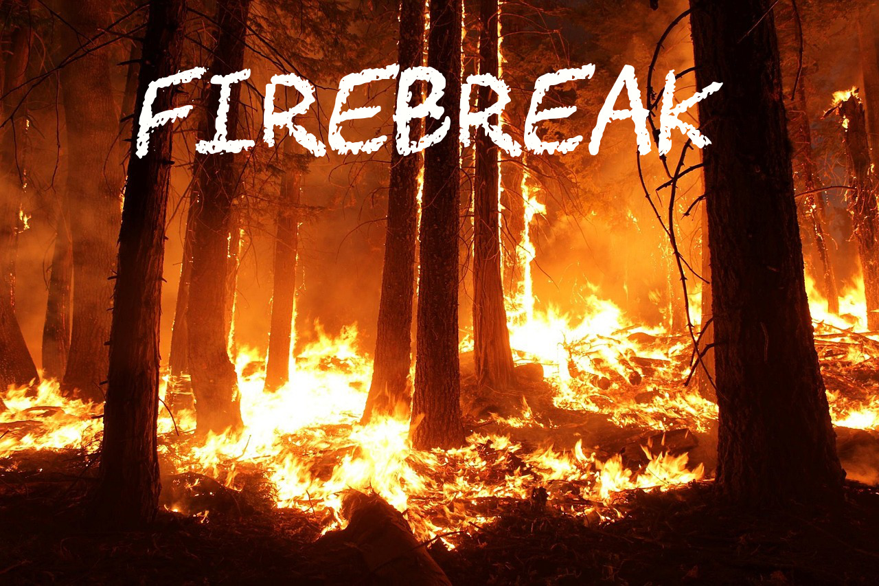Firebreak: A Fifty Word Story