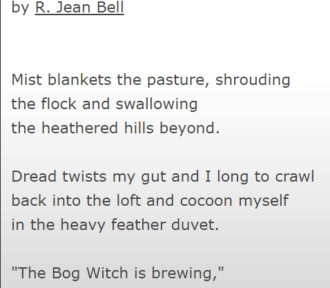 "About ""The Bog Witch's Brew"""